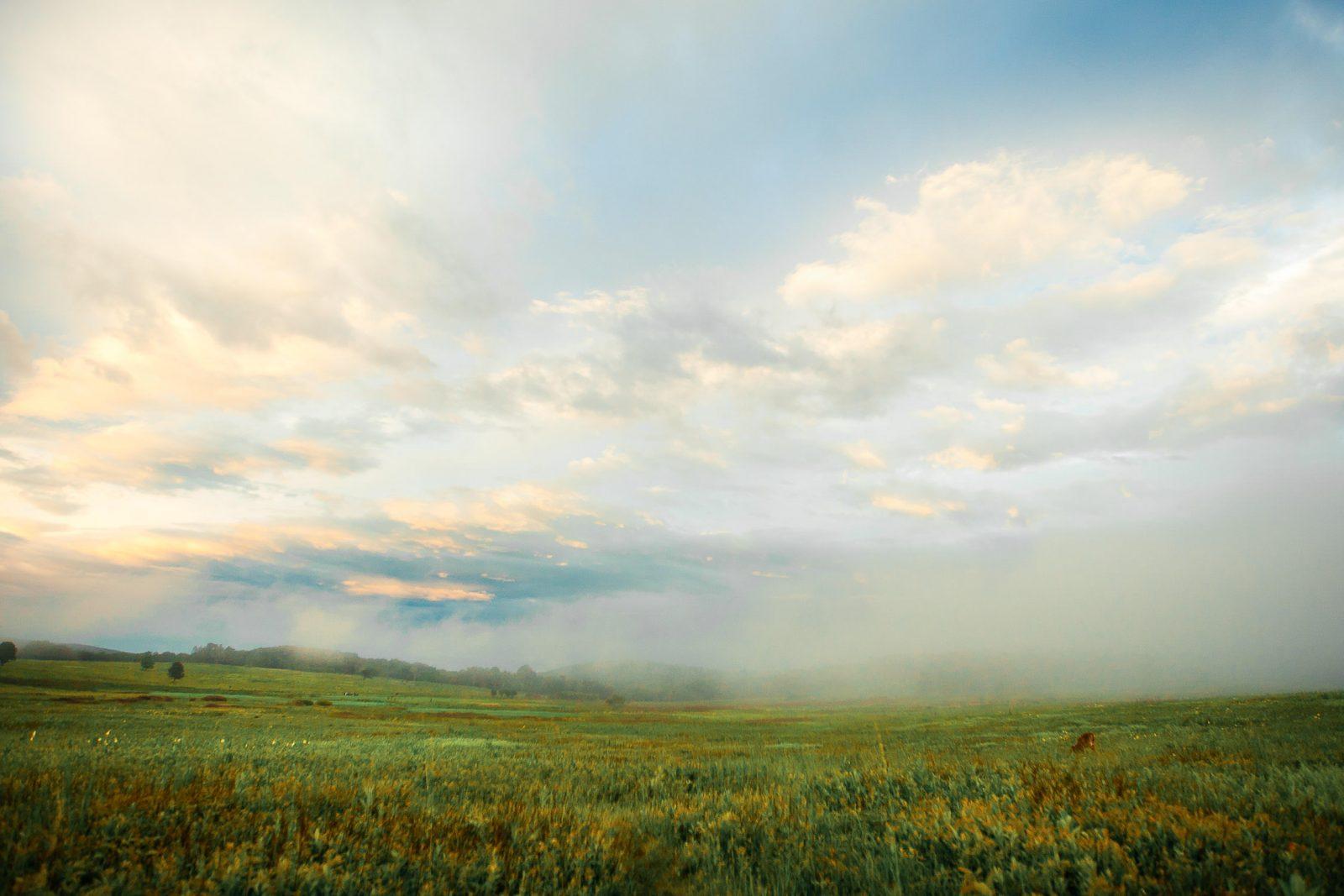 Big Meadows Shenandoah National Park_